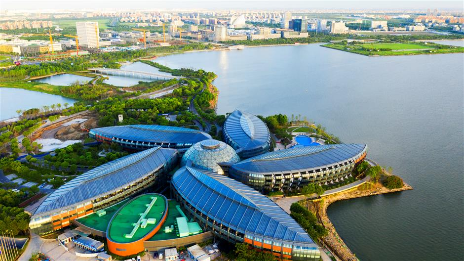 Lingang sets its sights on FTZ growth outlook