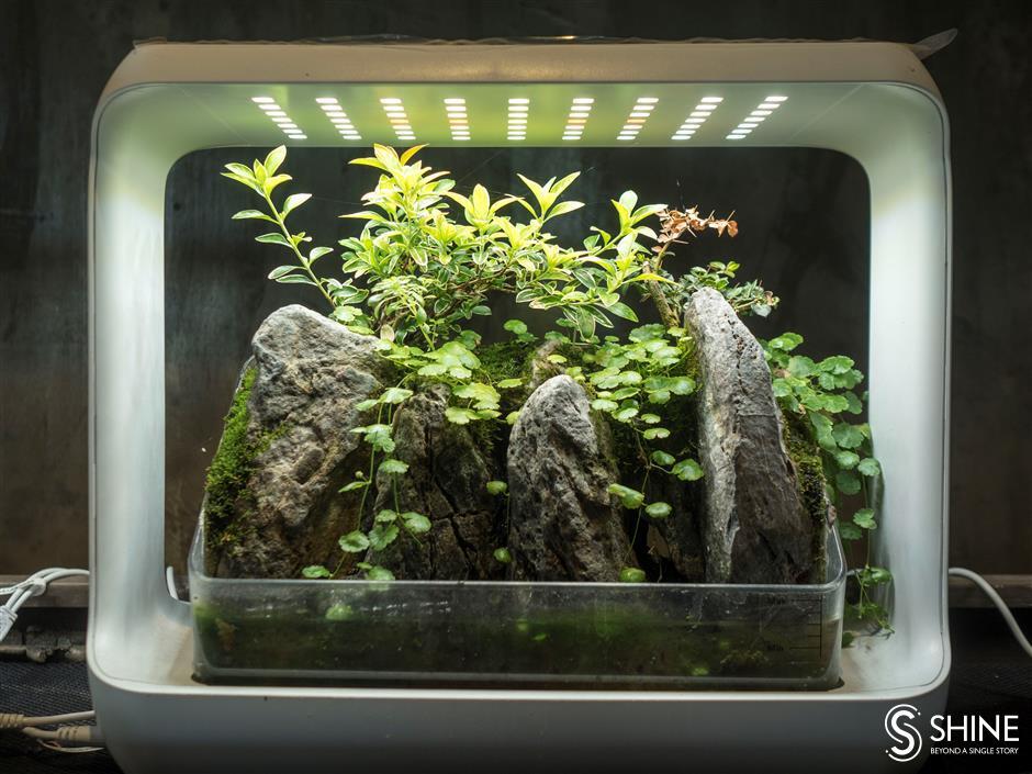 Zhu turns rubbish into miniature worlds