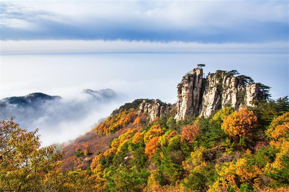 Shandong, Ningxia beckon holiday travelers