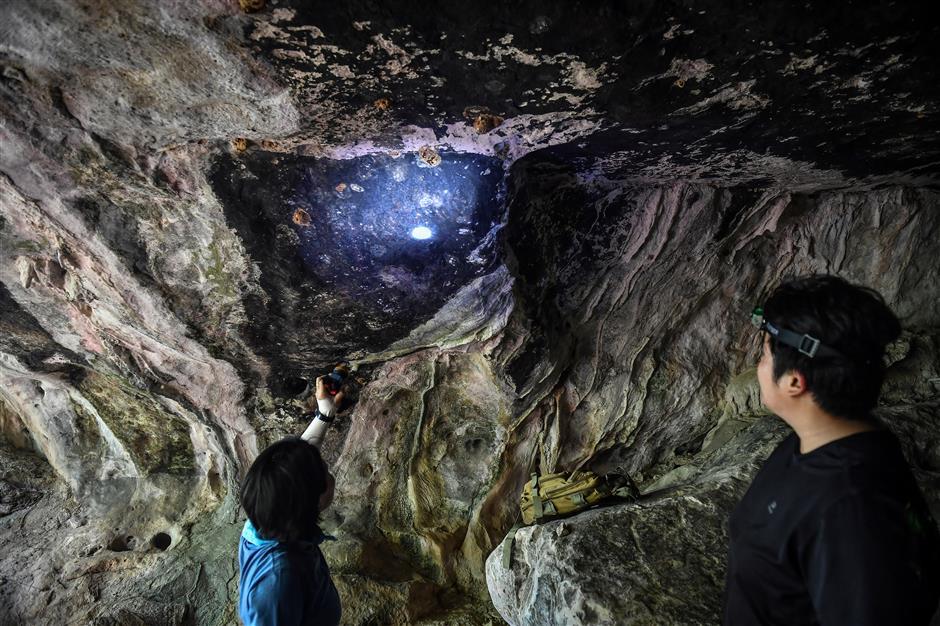 Cave raiders: Thai archaeologists hunt ancient artwork