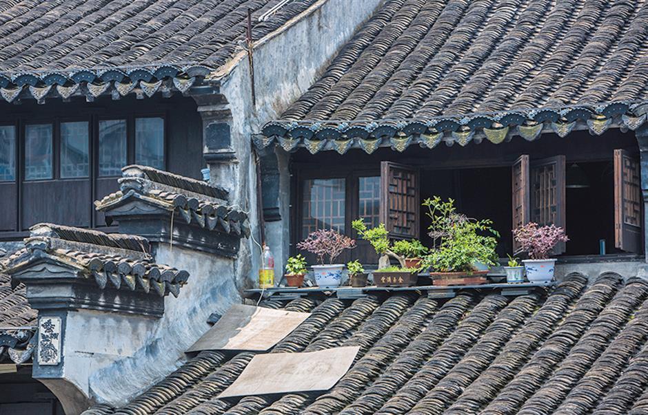 As watertowns go, a genuine gem sits in backyard of Shanghai