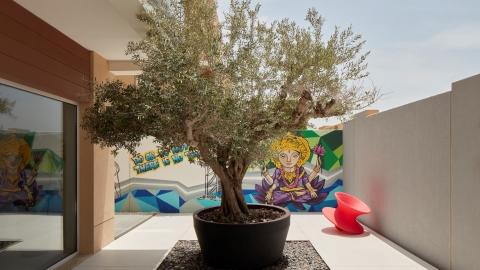 Homedecoration Shine News