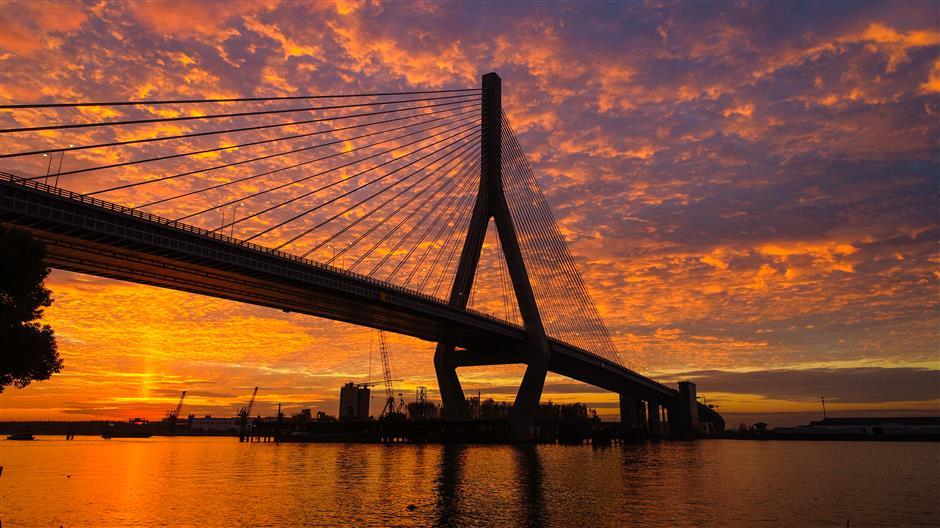 New Huangpu River bridge opens to car traffic