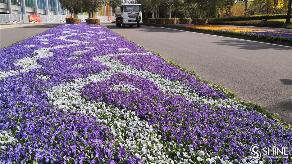 Import expo venue awash with natural color