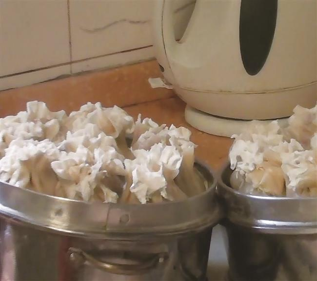 Steamed dumplings with bamboo shoots and meat fillings had crowds queuing up