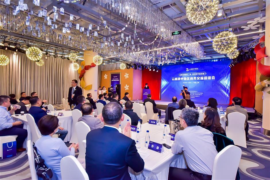 Dianzhong New Area enjoys CIIE spillover