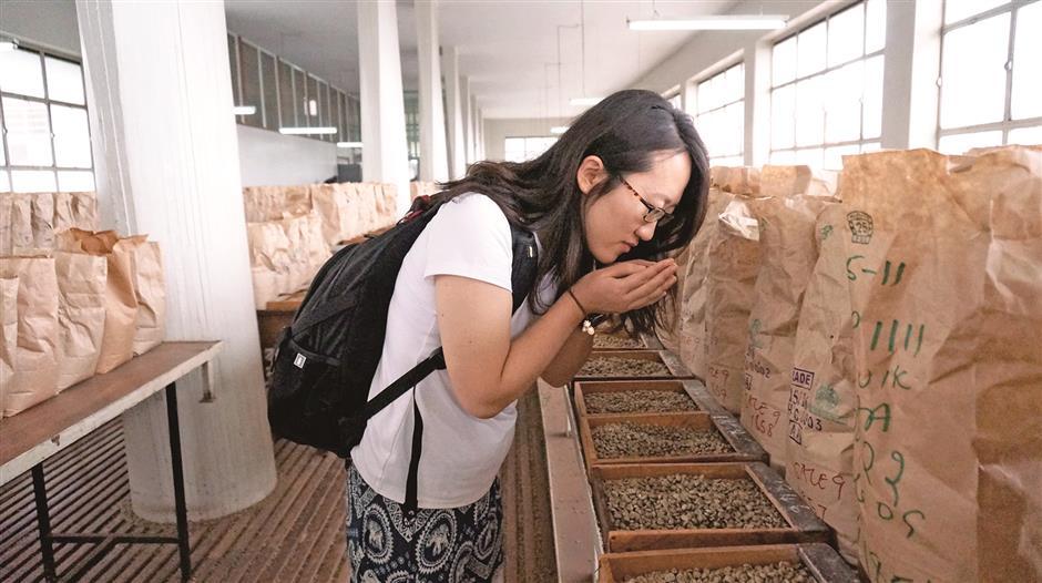 Gu Qinru: a green coffee buyers story