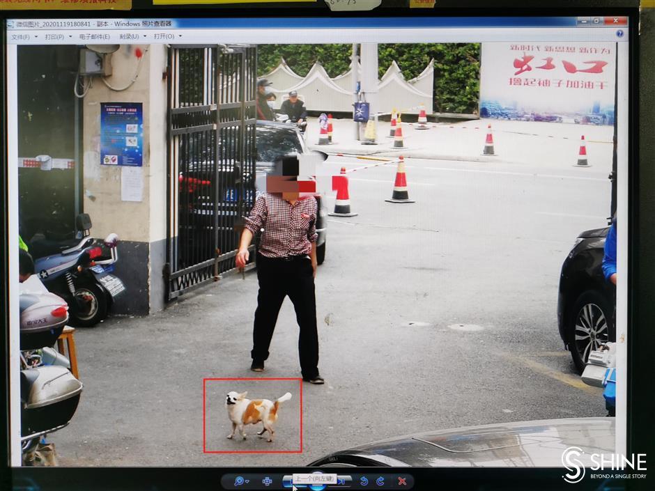 Cameras bring rule-breaking dog owners to heel