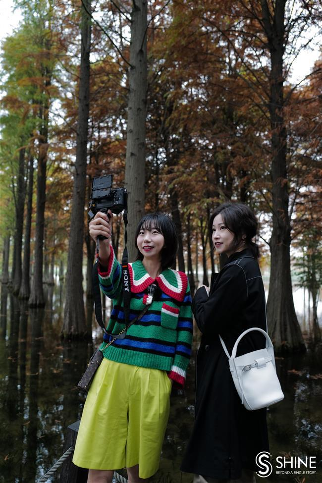Enjoy the beauty of citys water forest