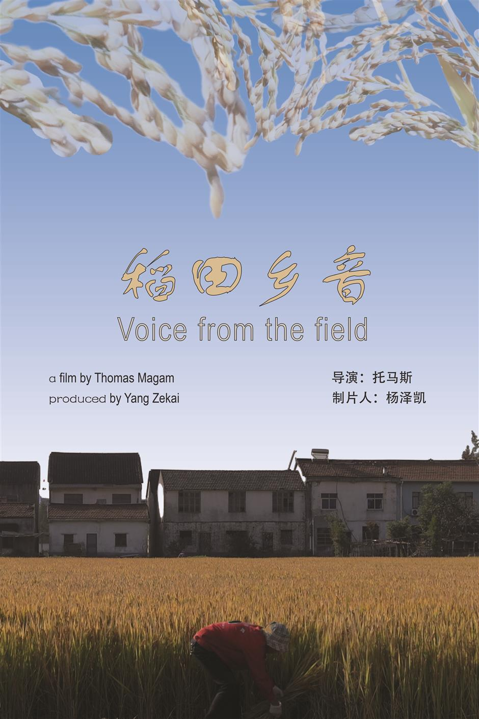 Looking China series: Voice from the fields