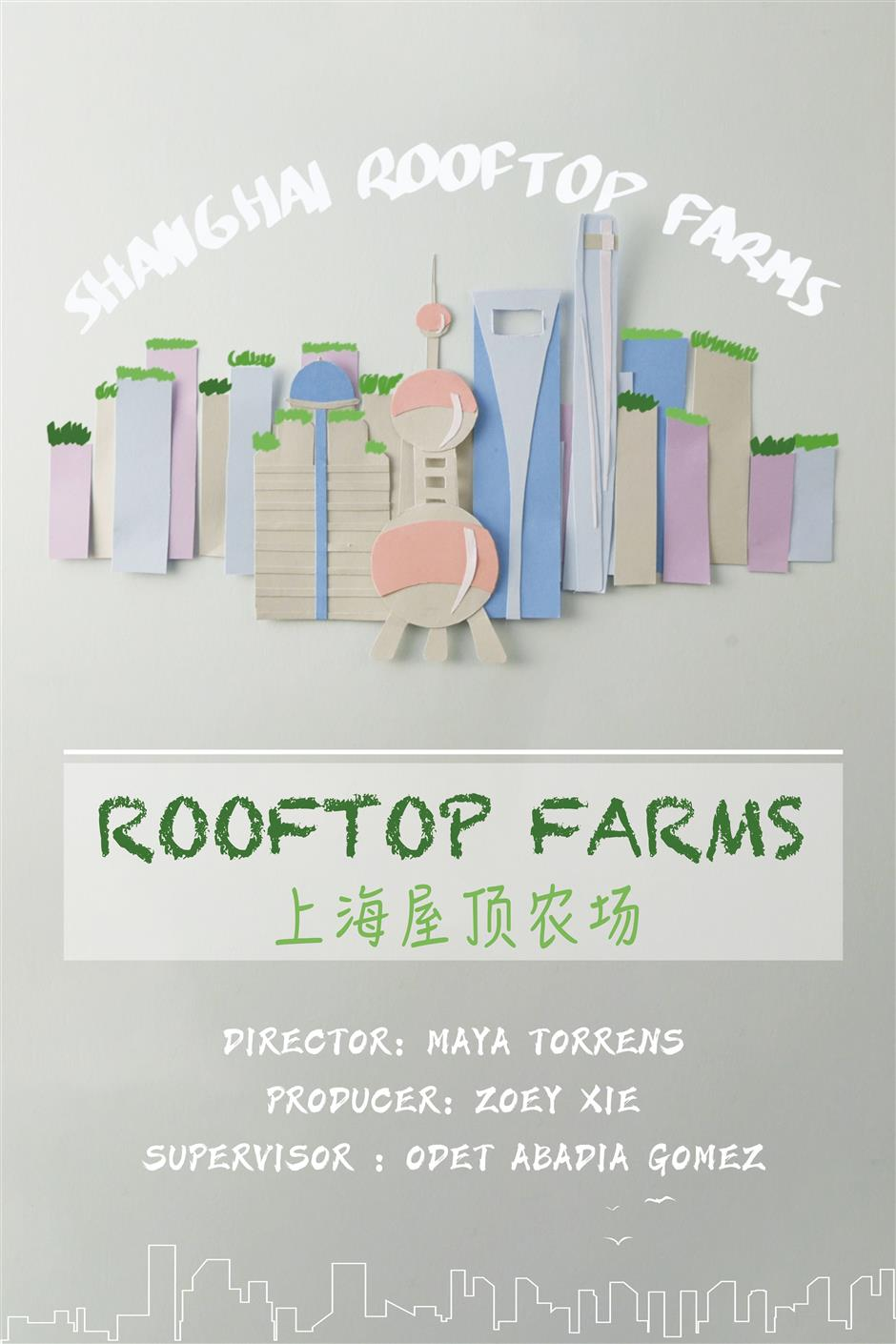 Looking China series: Shanghai rooftop farms