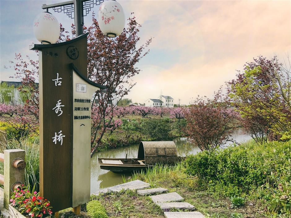Innovative social governance taking shape in Shanghais outskirts