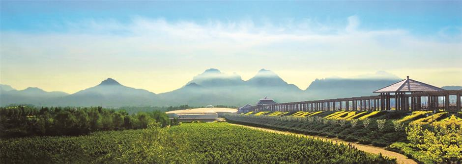 A rosy outlook for Chinas wines