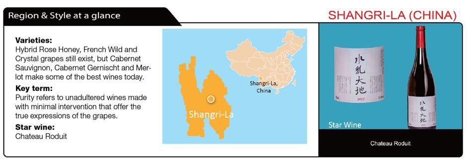 Chinas winemakers riding high
