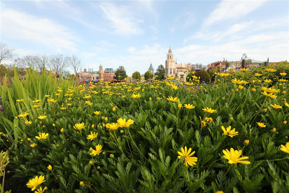 Shanghai Disney blossoming for fifth anniversary