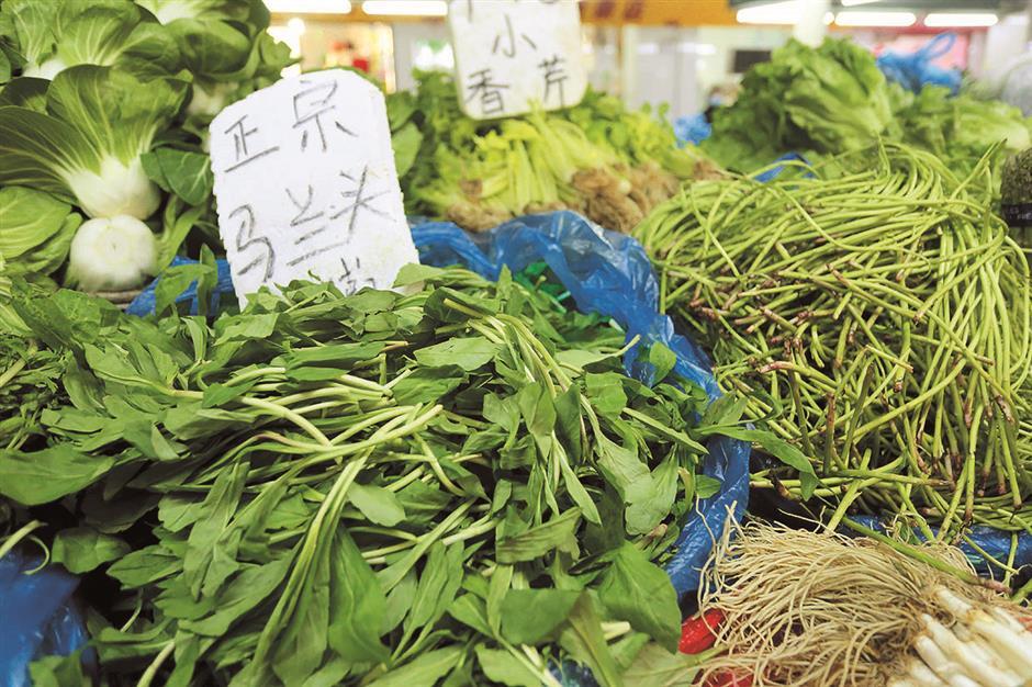 Vegetables add joy to spring: lets walk in the vegetable garden