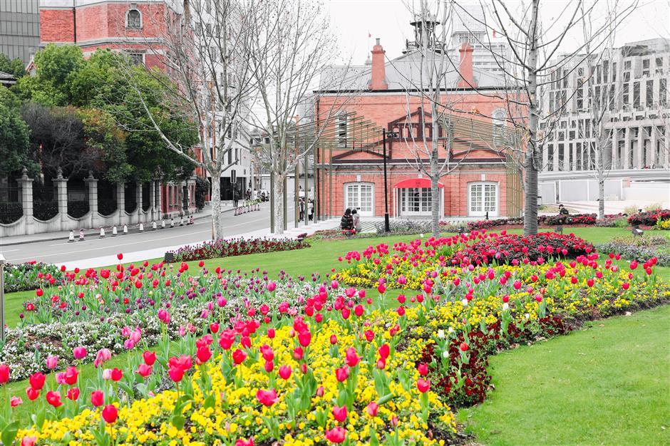 Tulips festival to bloom all overJingan