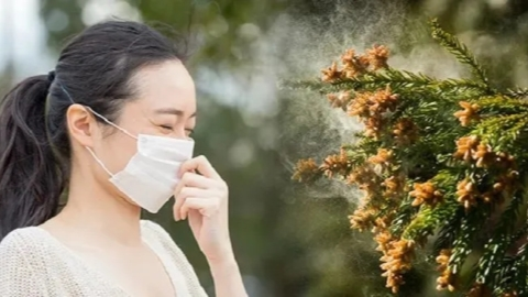 New study links pollen to COVID-19 infections - SHINE