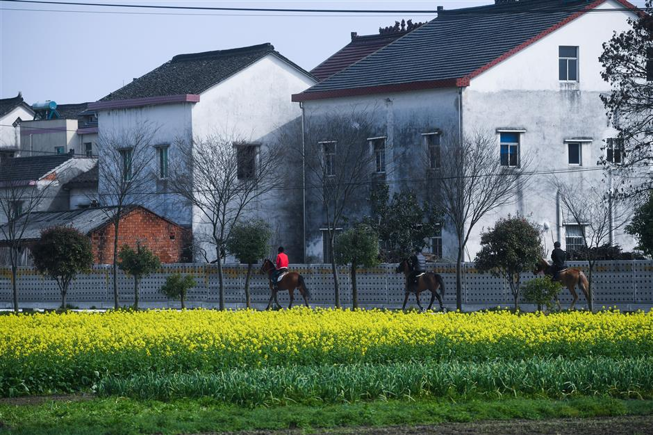 How Chinese farmers make money today in vitalized rural areas