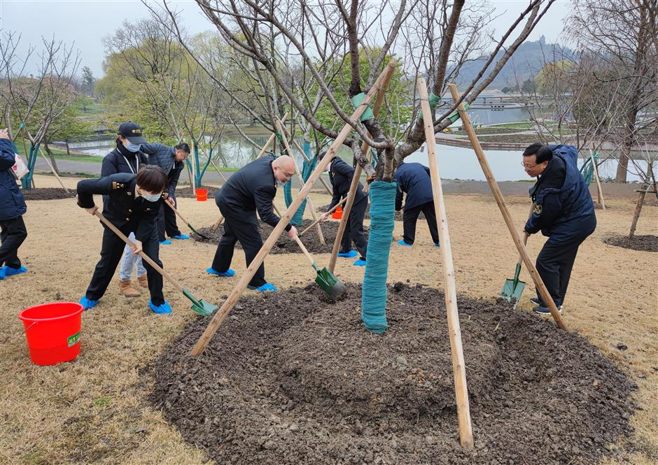 Adopt-a-tree campaign grows roots on Arbor Day