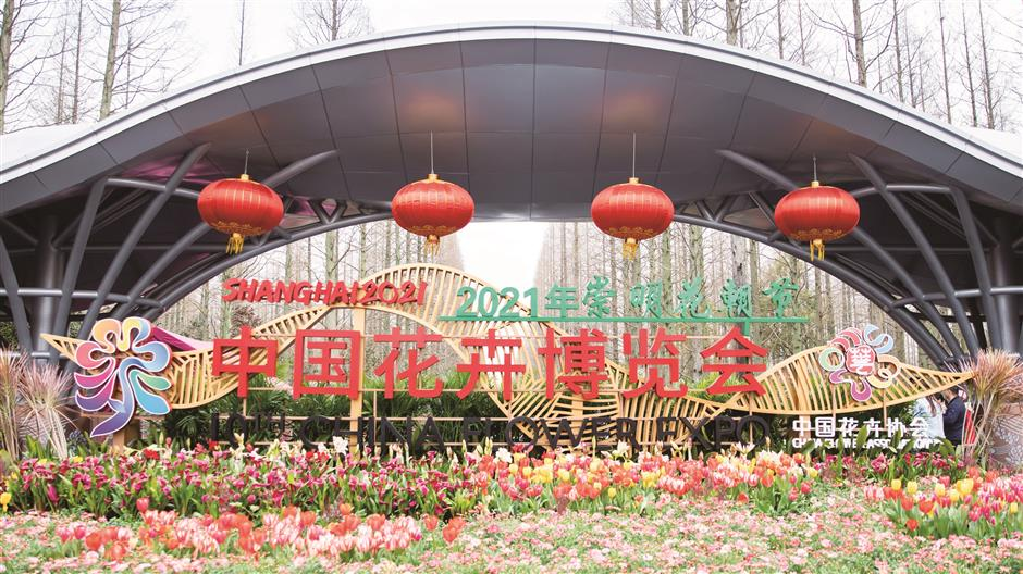 Spring Flower Festival opens to fragrant bloom and ocean of color