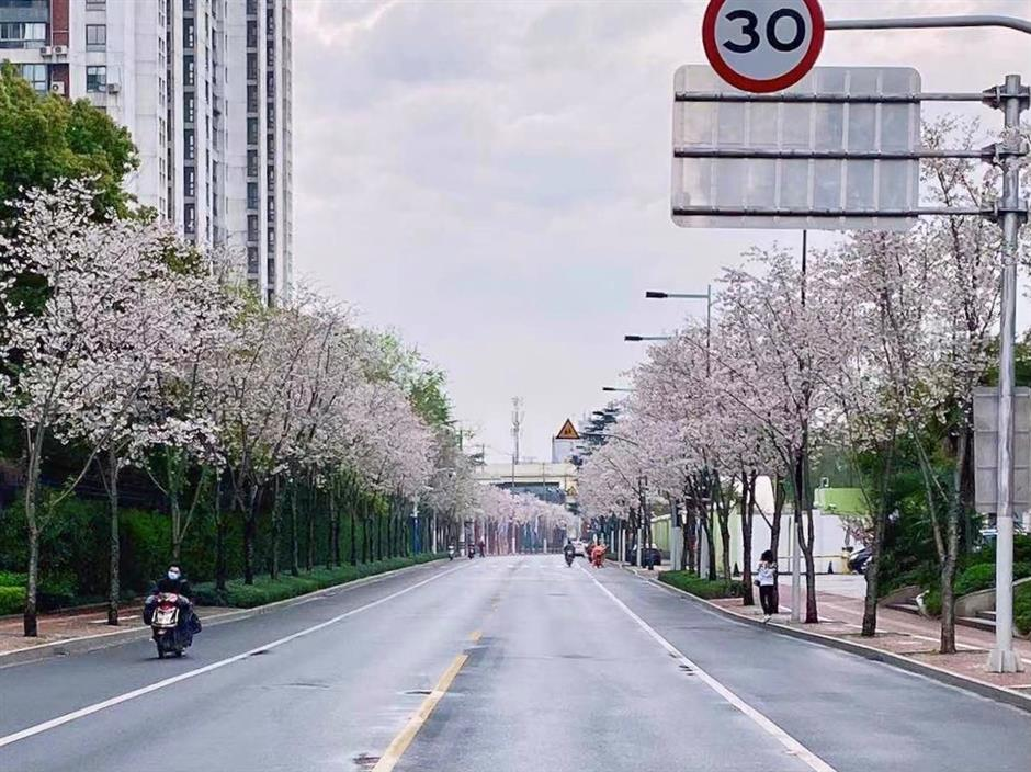 Moments of Jingan District in March 2021