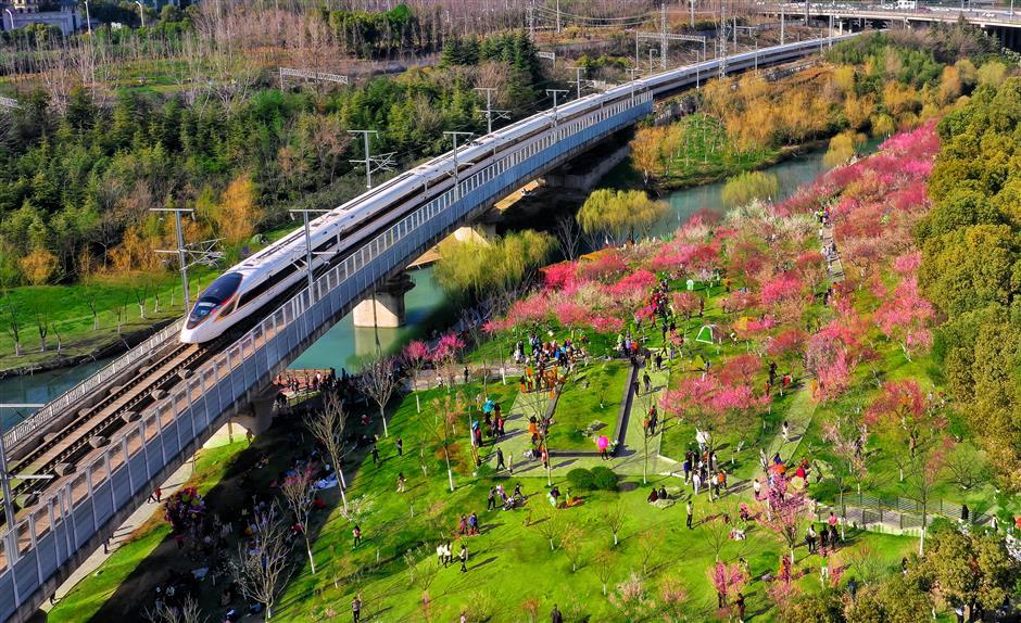 Errant kite leads to rail delays in region