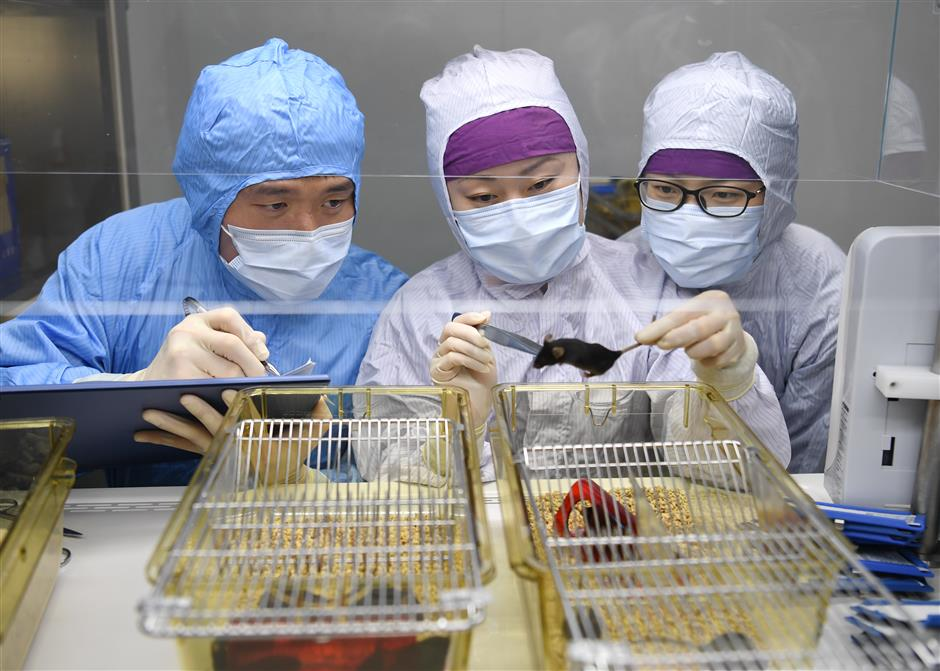 Animal science center boosts cancer research