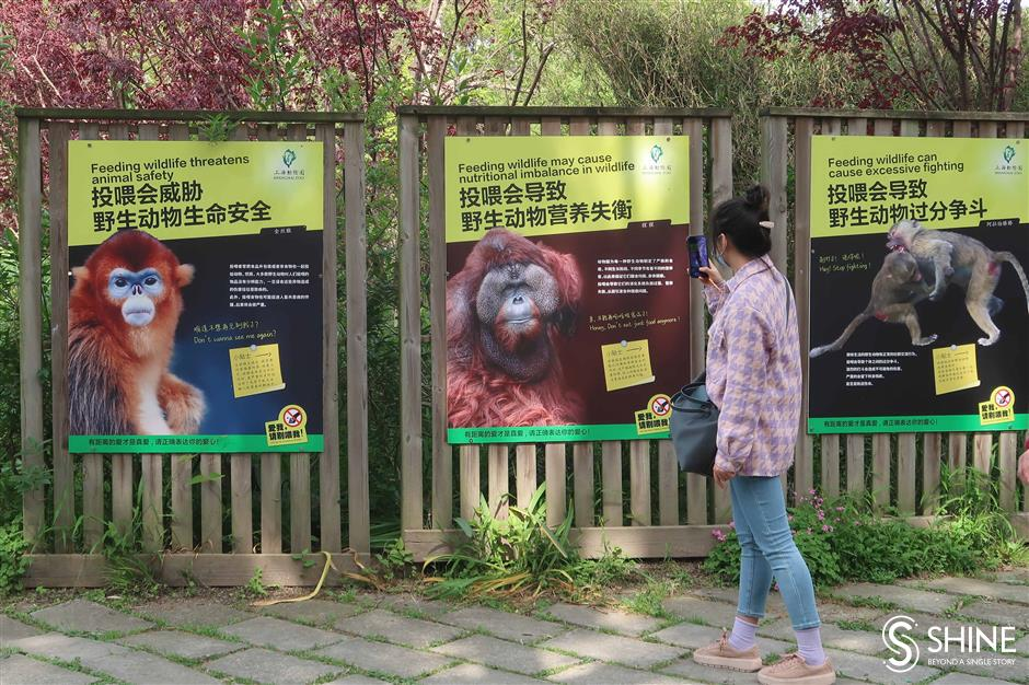 Visitors feeding the animals turns zookeepers stomachs