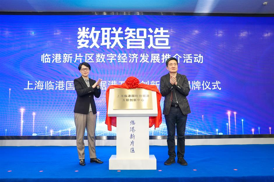 Lingang launches dedicated Internet access