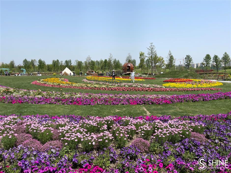 Flower festival highlights new city blueprint