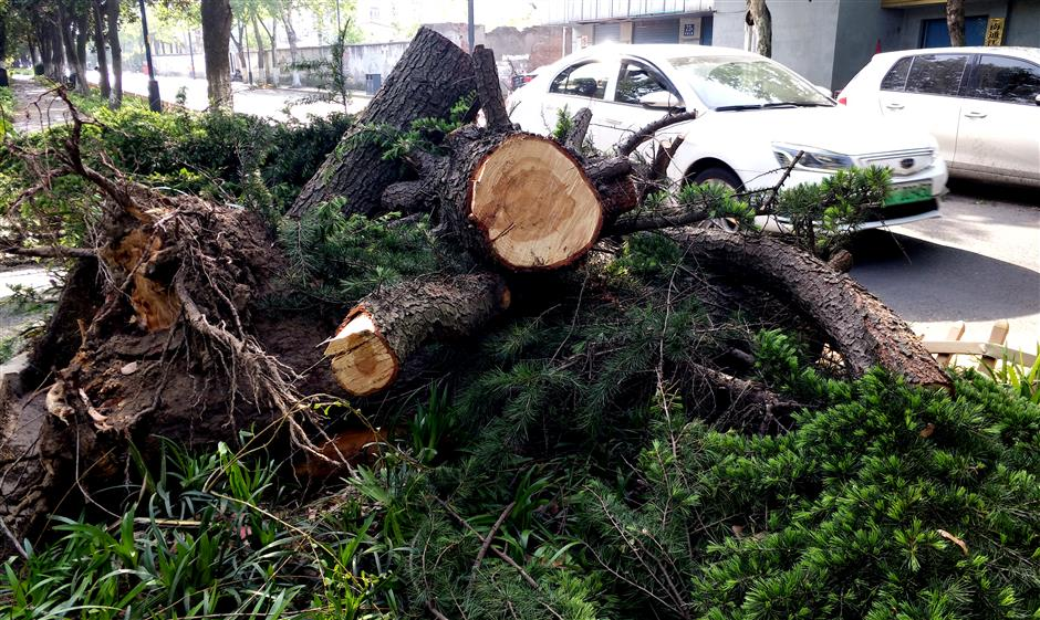 11 die, 9 missing as strong winds hitNantong