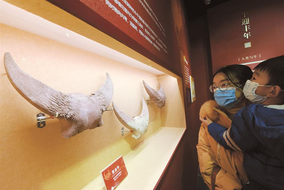 Ancient site reveals clues about early China