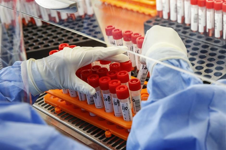 WHO asks for re-checks of research on possible new virus origin