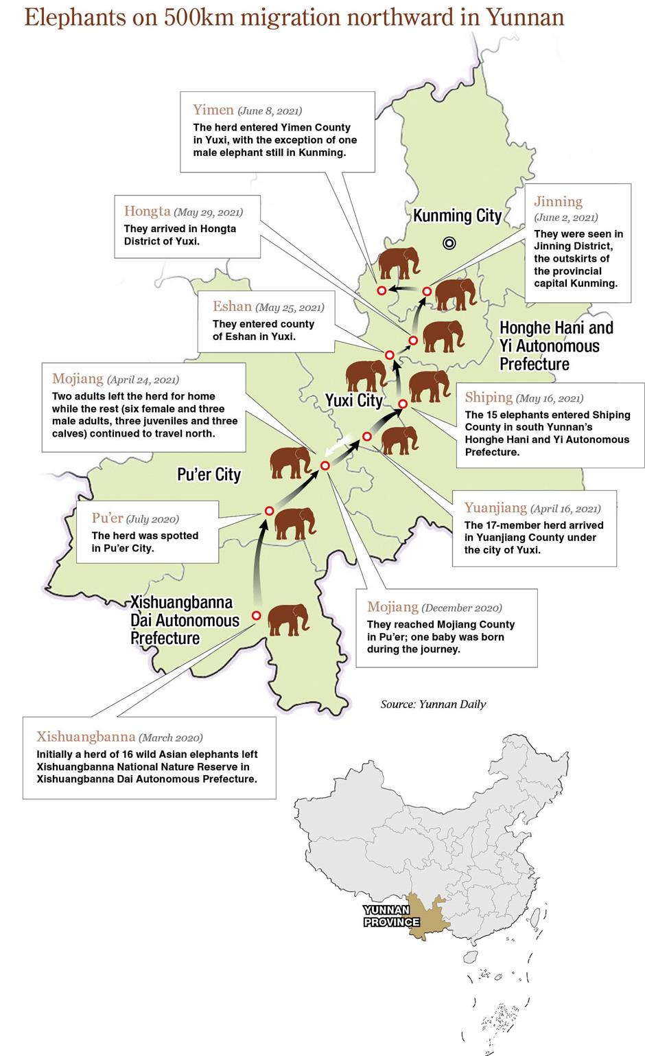 Elephants on move raise questions about man and nature