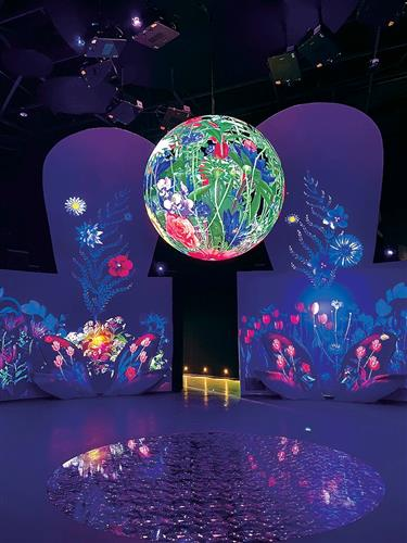 District's best efforts go on show at 10th China Flower Expo
