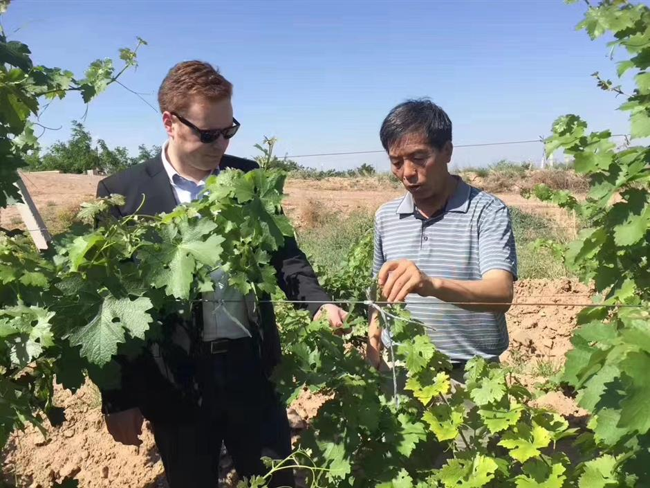 A quixotic mission to take Ningxia's wine global