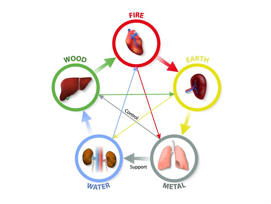 The holistic healing effects of traditional Chinese medicine