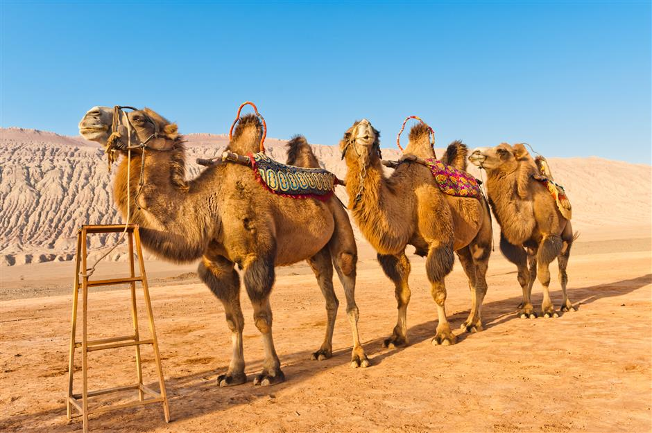 Direct flights from city to Xinjiang for summer travelers