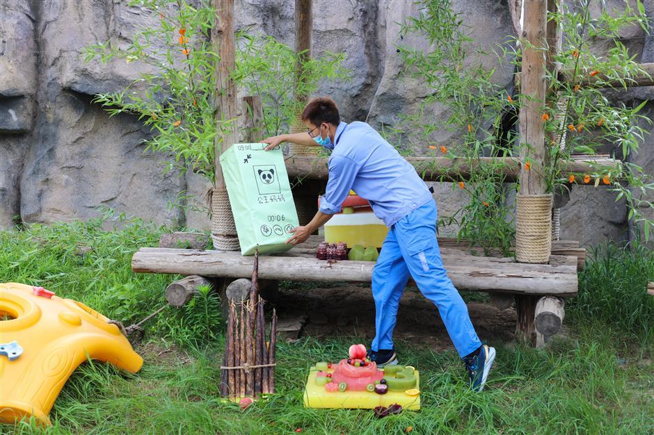 Panda celebrates birthday with fruit and vegetable ice cake