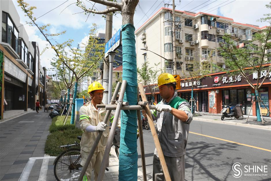 Greenery and sanitation workers reinforce city for In-Fa