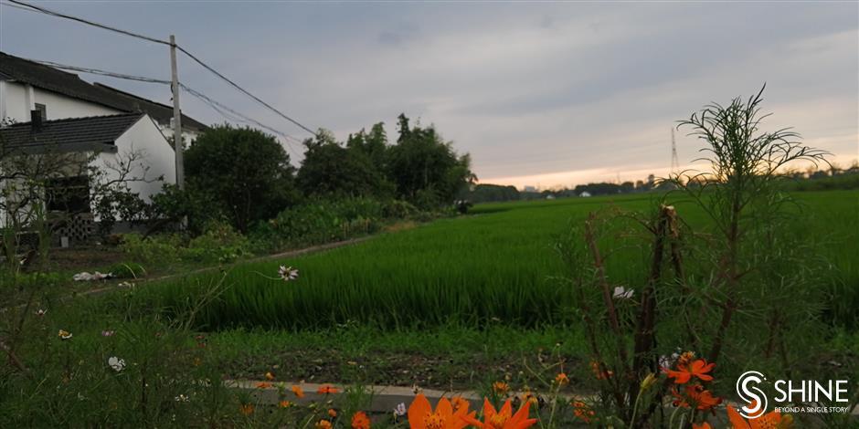 Striking perfect balance between rural and urban