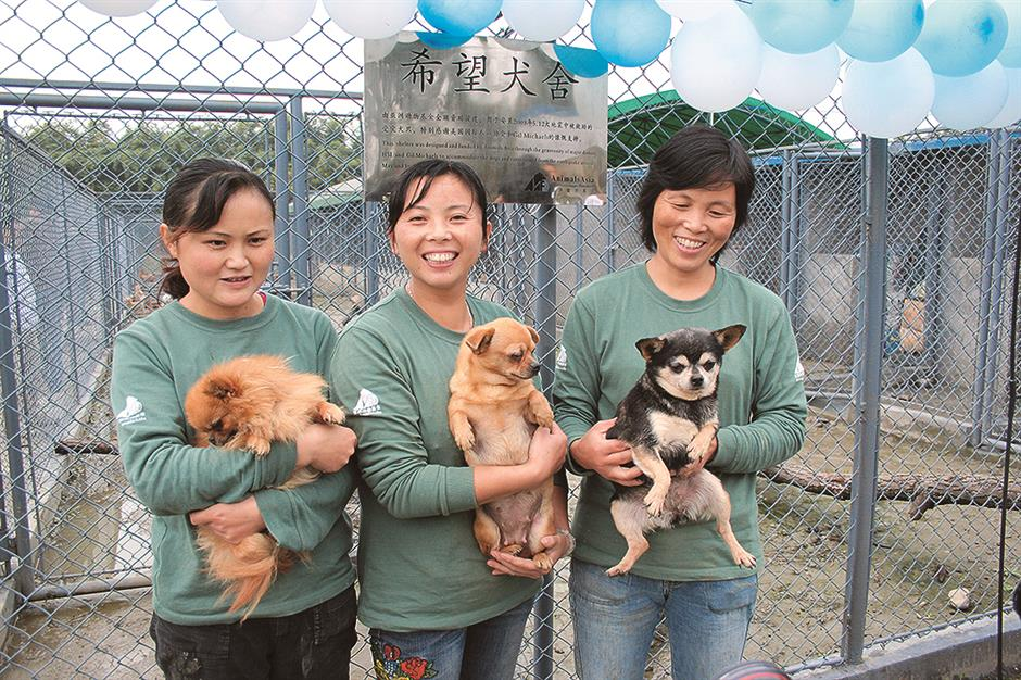 Pandemic inspires more compassion for animals in Wuhan