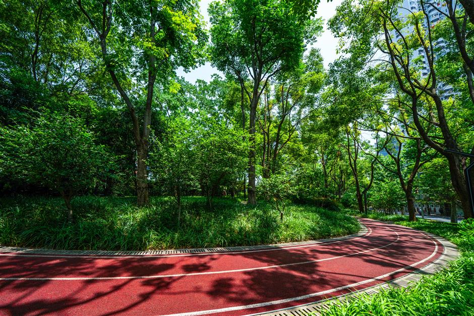 Sports venues, fitness areas, attest to Jing'an's sporting heritage