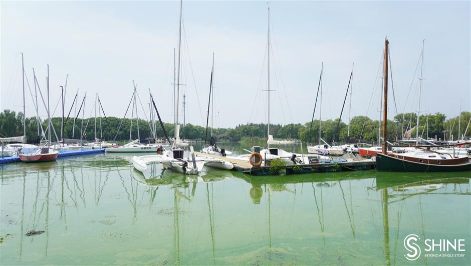 Discover the thrills and spills of life under the sailing mast