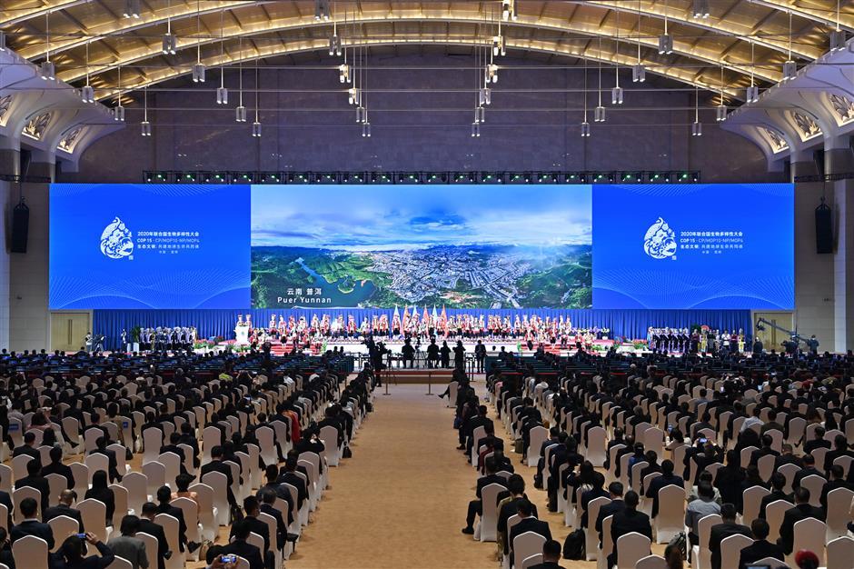 China hosts key biodiversity conference highlighting ecological civilization