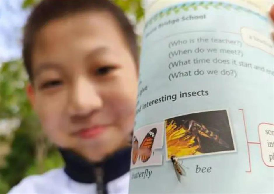 That's not a bee! Eagle-eyed student calls out textbook publisher's error